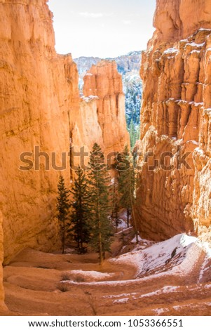 Red-yellow rocks in Bryce Canyon. Panorama of the mountain massif. A tourist place, a stone forest. #1053366551
