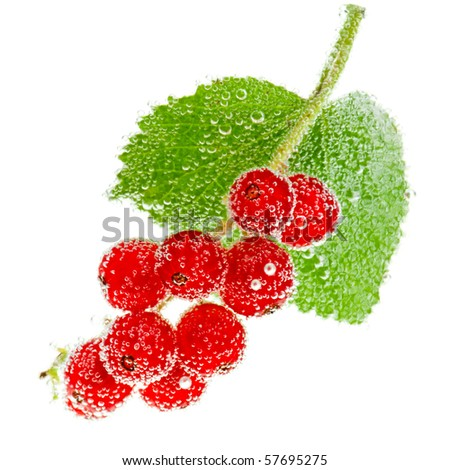 Redcurrant berries in water with bubbles on white background