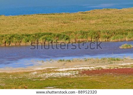 Reed Belt Landscape in National Park (Lake Neusiedl / Seewinkel), Austro-Hungarian Border