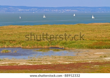 Reed Belt Landscape in National Park (Lake Neusiedl / Seewinkel), Austro-Hungarian Border