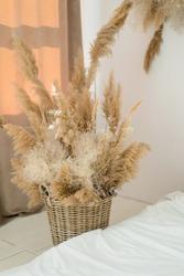Reed grass installation in whicker basket