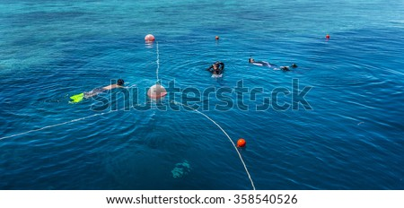 reef snorkelling great barrier reef Whitsundays tropical Queensland #358540526