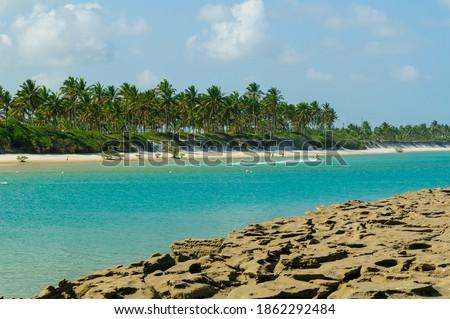 Reefs, emerald-colored sea and coconut grove in the background at Muro Alto Beach, in Porto de Galinhas, Ipojuca, near Recife, Pernambuco State, Brazil on October 1, 2008. Foto d'archivio ©