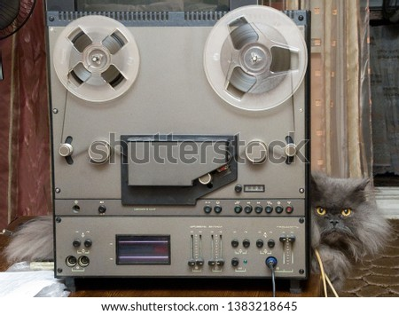 Reel Hi-Fi tape recorder. And the Persian cat. #1383218645