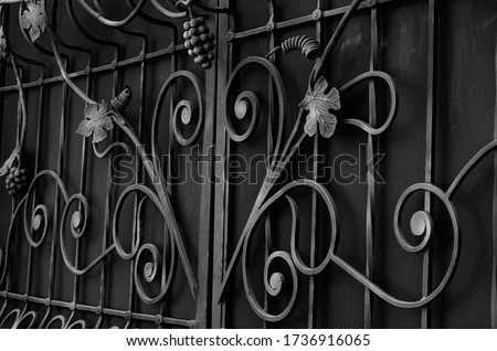 Refined forged decorative elements of a metal fence in black and white colors. Modern facades of fences with forged grape fruits and leaves. The sophistication of a private home Stock fotó ©