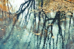 Reflection in water of an autumn landscape.Abstract background.Retro filter.
