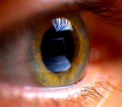 Reflection laptop in an eye