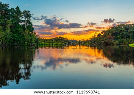 Reflection of a sunset by a lagoon inside the Amazon Rainforest Basin. The Amazon river basin comprises the countries of Brazil, Bolivia, Colombia, Ecuador, Guyana, Suriname, Peru and Venezuela.  #1119698741