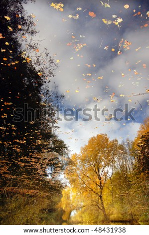 stock-photo-reflection-of-autumn-in-a-lake-48431938.jpg