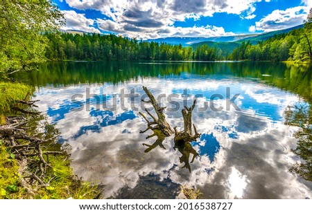 Reflection of clouds in a forest lake. Forest lake in mountains. Forest lake view