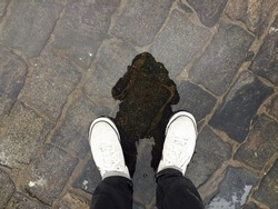 reflection of myself in the water on stone pavement