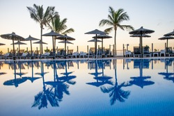 reflection of palm trees and umberllas in a swimming pool