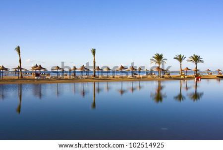 Reflection of palms on a beach in Egypt