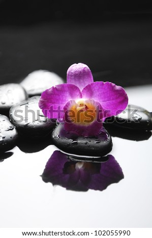 Reflection of pink orchid and zen stones