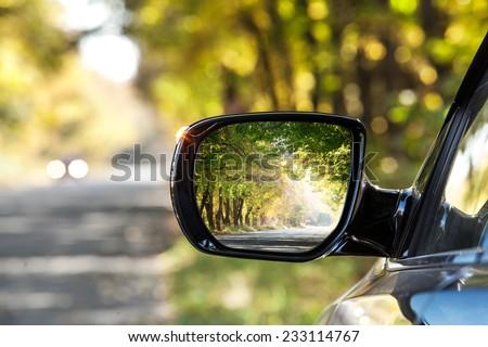 reflection of  sunny autumn...