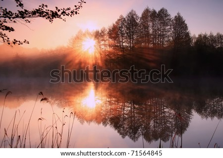 Reflection of the first rays of the sun in a misty forest lake