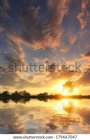 Reflection of the tree in the lake at dawn #179667047