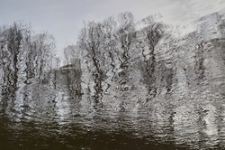 Reflection of trees in dark river water. Abstract blurry dark river water reflection of the bare trees