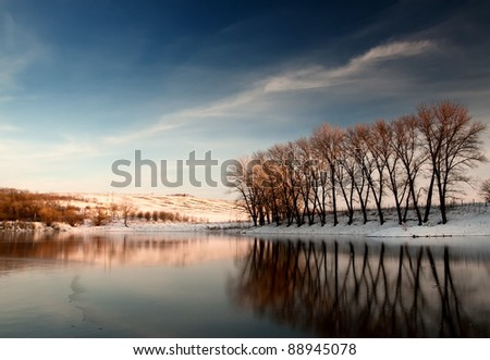 reflection of trees in water ice