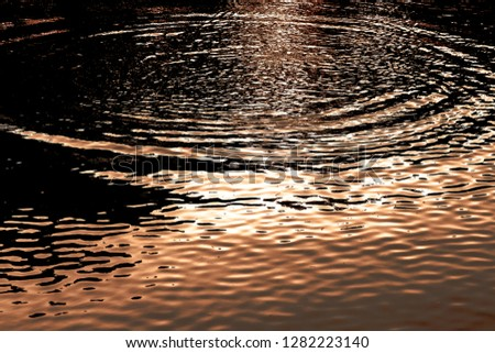 Reflections in the surface of water