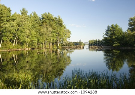 Reflections on a sunlight pond - stock photo