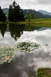 reflections on Lac Des Joncs in Switzerland