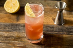 Refreshing Cold Sloe Gin Fizz Cocktail with a Lemon Garnish