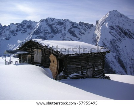 Refuge in the fresh snow