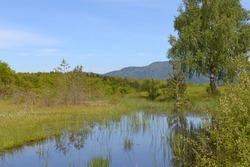 Region of a thousand ponds,1000 étangs, plateau of a thousand ponds in Haute-Saône