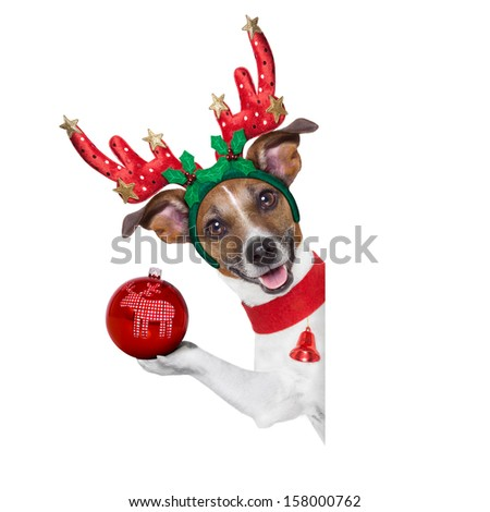 reindeer dog behind a blank banner with a christmas ball