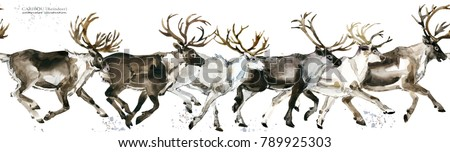Reindeer seamless pattern. Caribou watercolor illustration.