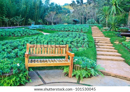relax chair in the garden path