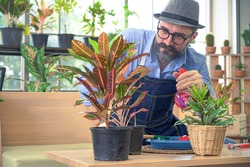 Relax hobbies lifestyle of Caucasian male  wearing apron spray water to growing a plants in the room at home. People hobby activity.