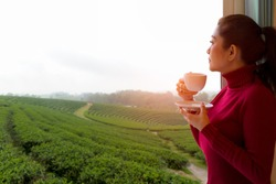 Relax style. Asian woman with red sweater fresh morning drinking hot coffee and looking out the window for see Tea farm on dreaming sunny day, relax and freedom day.  Lifestyle Concept.