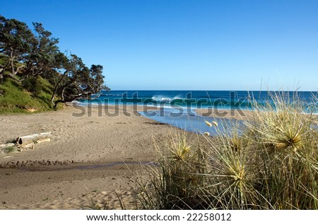 Relaxing beach scene at Kings Beach, Whananaki North, Northland, New Zealand