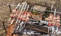 Relaxing in the garden in nature, juicy wild goat kebabs on skewers, a hunter's trophy, cooking kebabs on a fire