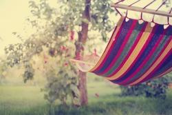 relaxing in the hammock in the summer garden