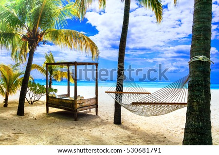 Relaxing tropical holidays with hammock under palm tree. Mauritius island