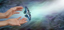 Releasing a butterfly into the light  - soul release metaphor - female hands appearing to let go of a butterfly on a blue green energy flowing background with lift shaft in right corner and copy space