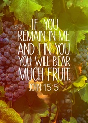 Remain in Me and I in You John 15.5