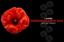 Remembrance day banner. Poppy flower on black background.
