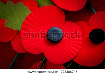 Remembrance day in the UK and salute to veterans of the armed forces concept with a close up on a group of Remembrance poppies and one poppy in the center of the image