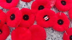 Remembrance Day poppies and Canadian pin laid on The Tomb of the Unknown Soldier. Located at the National War Memorial Ottawa Ontario Canada.