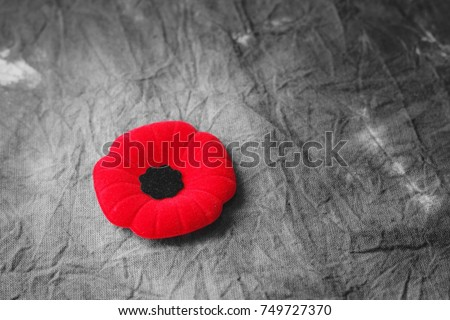 remembrance day,veterans day #749727370