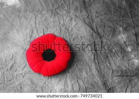 remembrance day,veterans day #749734021