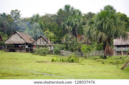 Remote village in the Peruvian Amazon with thatched huts and Mauritia palms