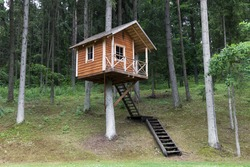 Remote wooden tree house in the forest