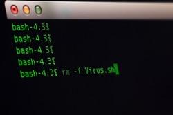 remove virus file on unix OS.