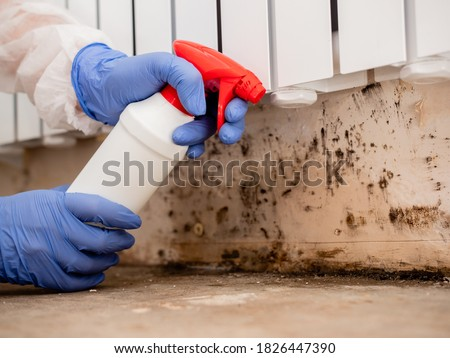 Removing Mold From Internal Walls. Elimination of mold at home under the heating battery, Clouse-up. Stockfoto ©
