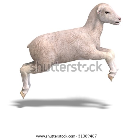 rendering of a young sheep